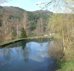 étang de pêche sur place