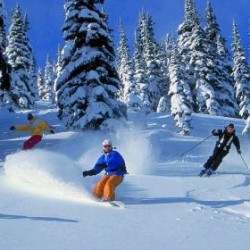 Ski alpin et Surf